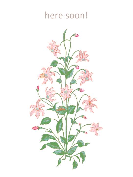 Printed Rug : Garden Red